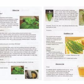 liecive_recepty_z_prirodnej_zahrady-page-002