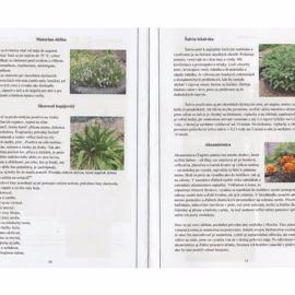 liecive_recepty_z_prirodnej_zahrady-page-004