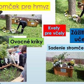snimka14