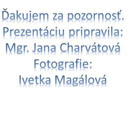 snimka8