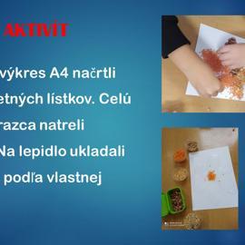 snimka19